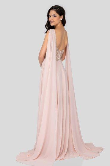 The Oscar Night Dress – Terani thumbnail